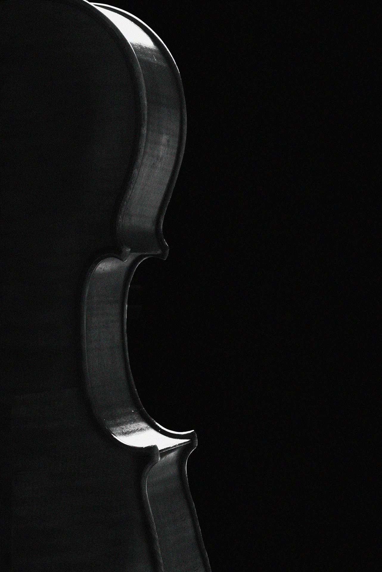 Fotografia still life violino realizzata da Barbara Trincone Fotografo professionista a Napoli specializzata in fotografia musicale, ritratti per artisti, gruppi, attori, cantanti, musicisti e performer